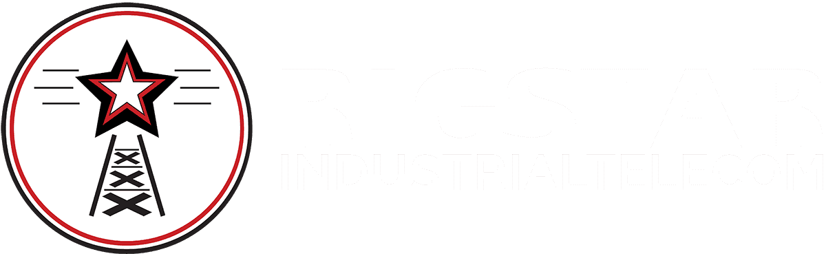 Rigstar White Logo